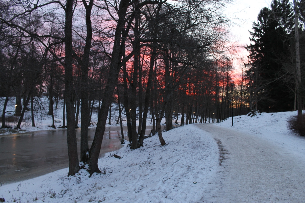 Winter sunrise along Åkers Canal