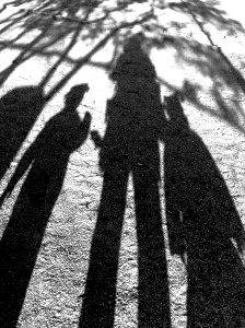 Long shadows in stockholm