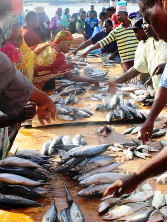 Early morning bargains at the Kivukoni Fish Market in Dar Es Salaam, Tanzania