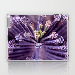 Purple Euphorbia in Detail - laptop and i-pad skin